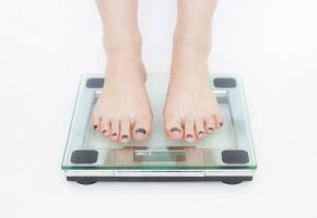 Calorie pomme Rapport Statistiques et informations