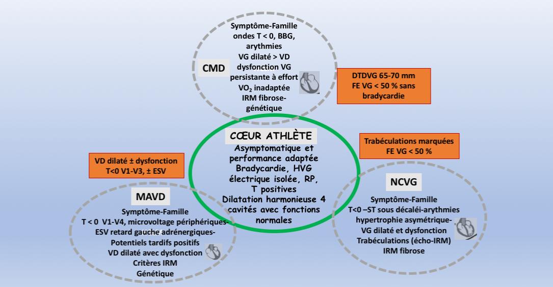 https://www.cardiologie-pratique.com/sites/www.cardiologie-pratique.com/files/images/article-journal/capture_decran_2018-06-04_a_11.51.16.png