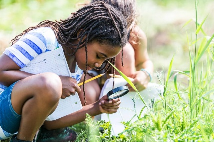 apprentissage en plein air