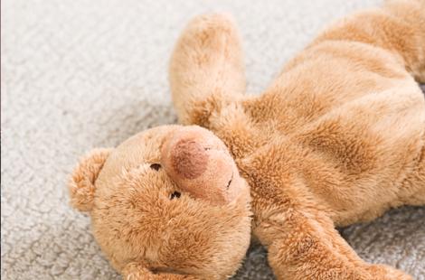 Ours enfant battu secoué
