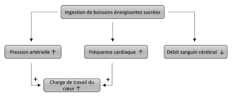 https://observatoireprevention.org/wp-content/uploads/2019/06/Boissons_energisantes_effets_cardiovasculaires.jpg