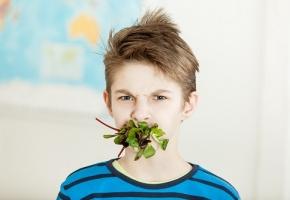https://www.egora.fr/sites/egora.fr/files/styles/290x200/public/visuels_actus/vegan-vegetarien-enfant.jpeg?itok=-SLilgqf
