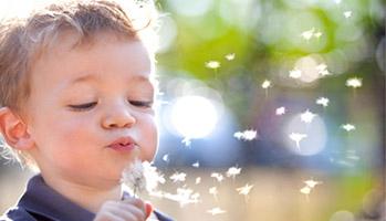 Allergie: absence de bénéfice des préparations infantiles hypoallergéniques