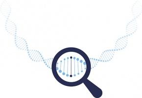 https://www.egora.fr/sites/egora.fr/files/styles/290x200/public/visuels_actus/test_genetique_gene_genes.jpg?itok=Q__PUaFu