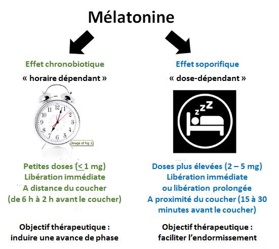 https://www.jim.fr/e-docs/00/02/BE/7C/media_figure_melatonineBAT.jpg