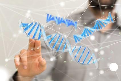 Les 2 voies biologiques impliquées dans la longévité et la santé pourraient être bien séparées