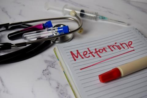 La thérapie à base de metformine peut être un traitement de fond, et de première intention pour les patients diabétiques de type 2, à faible risque cardiovasculaire et naïfs de traitement (Visuel Adobe Stock 335968120)