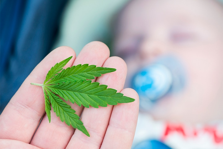 A close up of a marijuana leaf in the hand of a woman and a baby with a pacifier blurred in the background