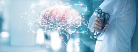 La connectivité cérébrale corrélée à l'atrophie cérébrale dans l'épilepsie (Adobe Stock 208730889)