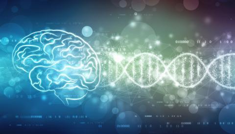 Des modulateurs épigénétiques permettent d'obtenir, plus rapidement que les médicaments « classiques », des effets de type antidépresseur (Visuel Adobe Stock 218724187)