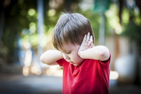 L'étude confirme que l'effet Colavita ne s'applique pas encore à la Petite Enfance (Visuel Adobe Stock 241526204).