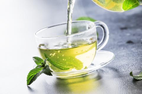 Ses vertus sont multiples et bien documentées : et ce composé antioxydant du thé vert, l'épigallocatéchine gallate (EGCG) l'est également (Visuel Adobe Stock 230249907)