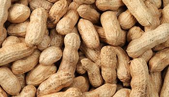 Augmentation des cas d'allergie alimentaire chez les jeunes enfants