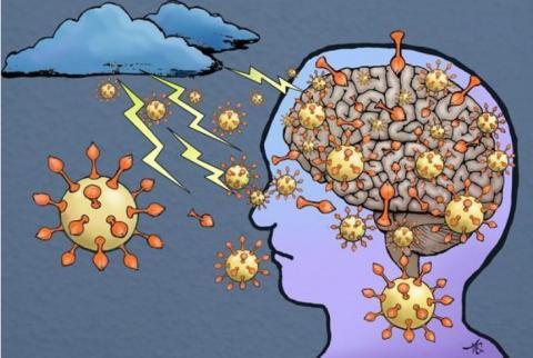 Prévenir l'infection des cellules du système nerveux par les coronavirus, comme le SARS-CoV-2 responsable du COVID-19, c'est l'objectif de cette équipe canadienne (Visuel Fotolia)