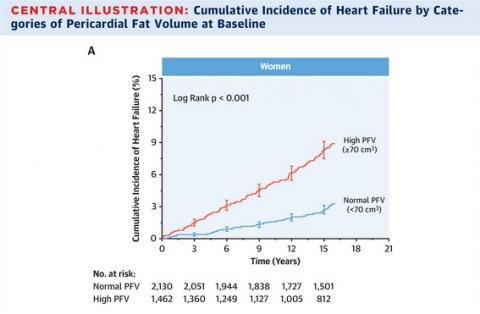 Les femmes présentant des quantités élevées de graisse péricardique encourent un risque multiplié par 2 d'insuffisance cardiaque(Visuel JACC)