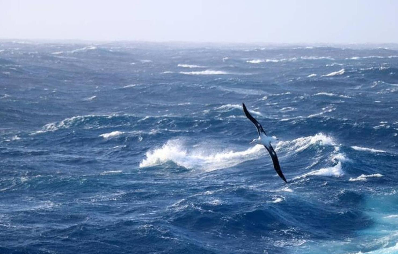 Une image contenant extérieur, eau, ciel, océan  Description générée automatiquement
