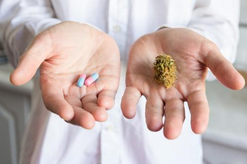 Alors comment le cannabis affecte-t-il le développement et le fonctionnement du cerveau chez les jeunes adultes atteints de TDAH ? (Visuel Adobe Stock 112934934)