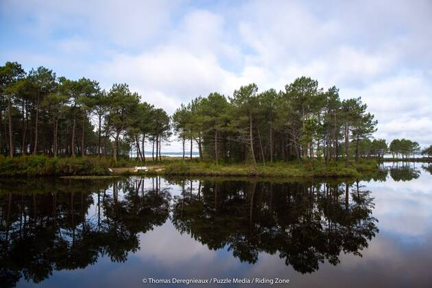 Une image contenant arbre, eau, extérieur, ciel  Description générée automatiquement