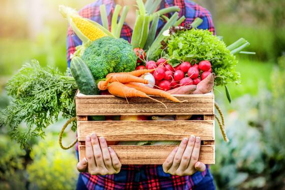 une boîte remplie d'aliments sains