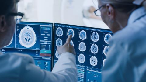 C'est une nouvelle étape dans le domaine de la neuro-exploration mais aussi dans le contrôle à distance de la fonction neuronale. Les rayons X permettent en effet de contrôler nos neurones  (Visuel Adobe Stock 236237463)